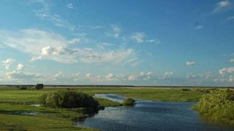 Spływy kajakowe - szlak Biebrzy