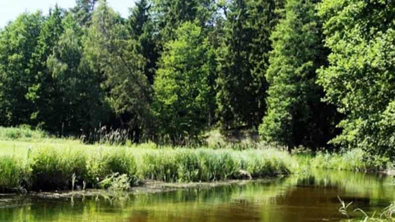 Spływy kajakowe - szlak Czarnej Hańczy