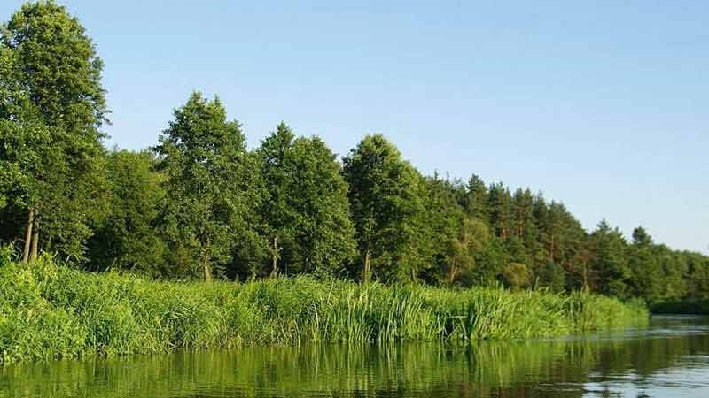 Spływy kajakowe - szlak Łyny