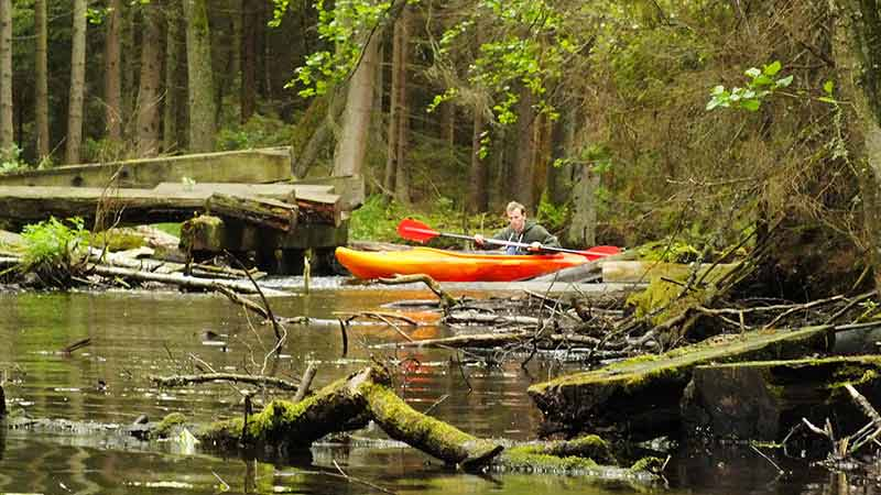 Spływy kajakowe - szlak rzeki Tejsówka