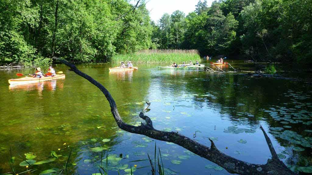 Szlak Krutyni - spływ kajakowy