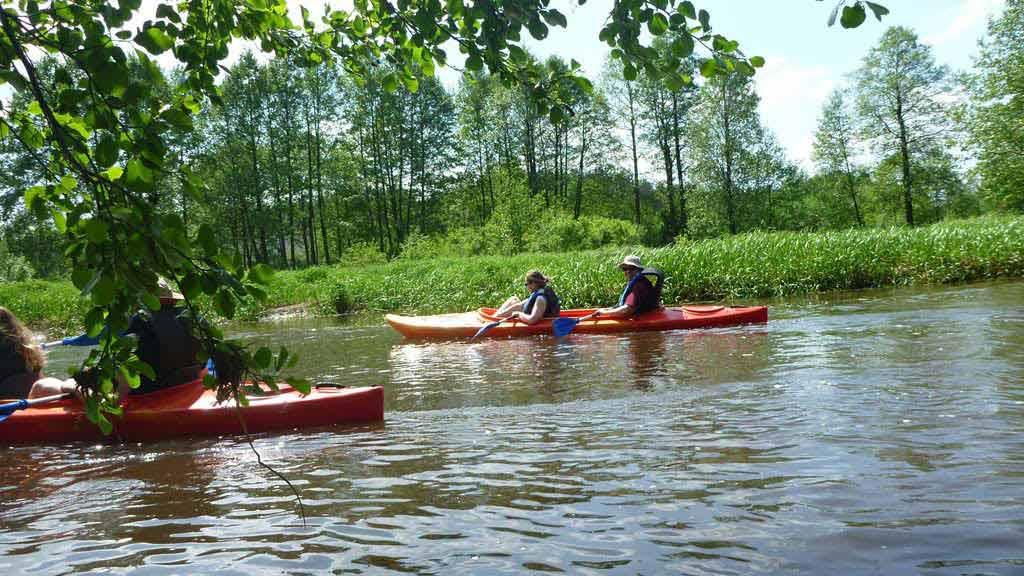 Wypożyczalnia kajaków Wodniak - zorganizowany indywidualnie spływ kajakowy na rzece Łynie