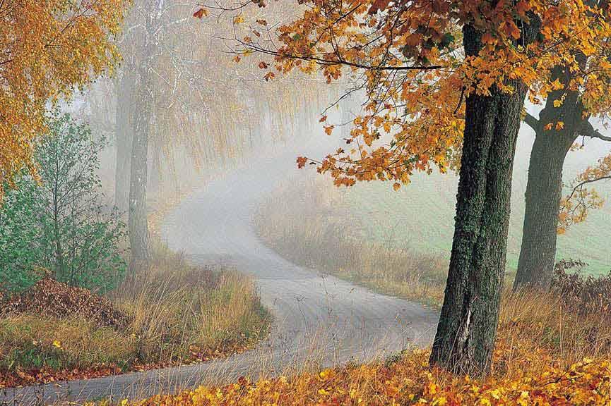 Ścieżki i trasy rowerowe po okolicy Krutyni