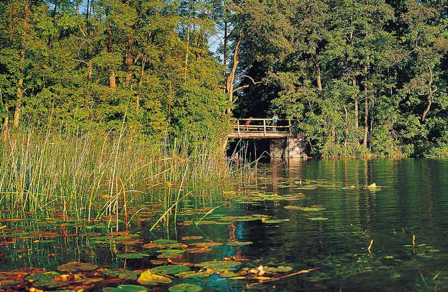 Spływ jednodniowy Krutynią trasą Zgon - Krutyń - śluza pomiędzy Jeziorem Mokrym i Krutyńskim