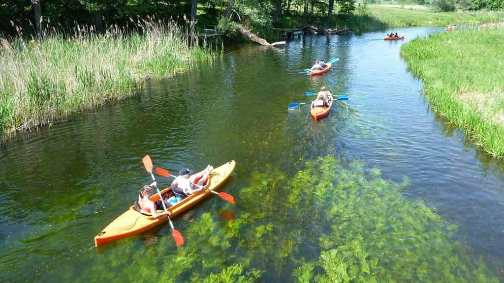 Wypożyczalnia kajaków Wodniak - grupa szkolna na spływie kajakowym rzeką Krutynią