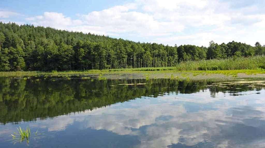 Szlak kajakowy rzeki Babant - jezioro Tejsowo