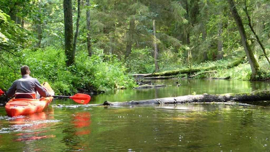 Kajaki na rzece Babant