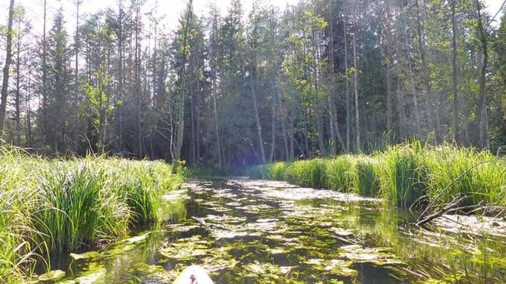 Szlak kajakowy rzeki Babant