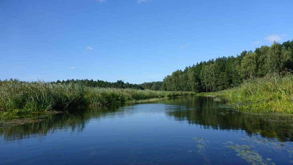 Szlak rzeki Krutyni - rezerwat Pierwos