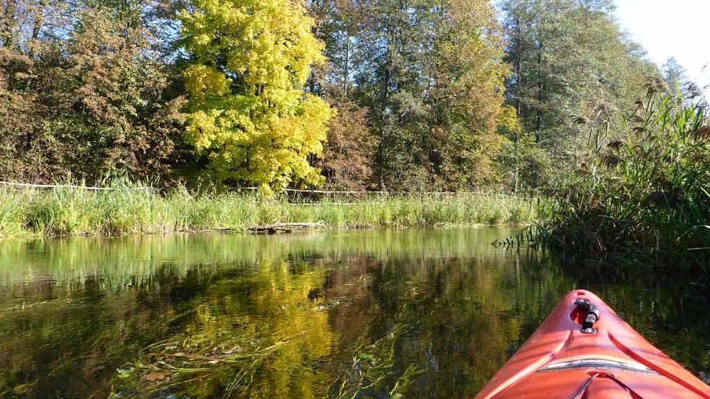 Spływ kajakowy rzeką Krutynią - rezerwat Krutynia Dolna