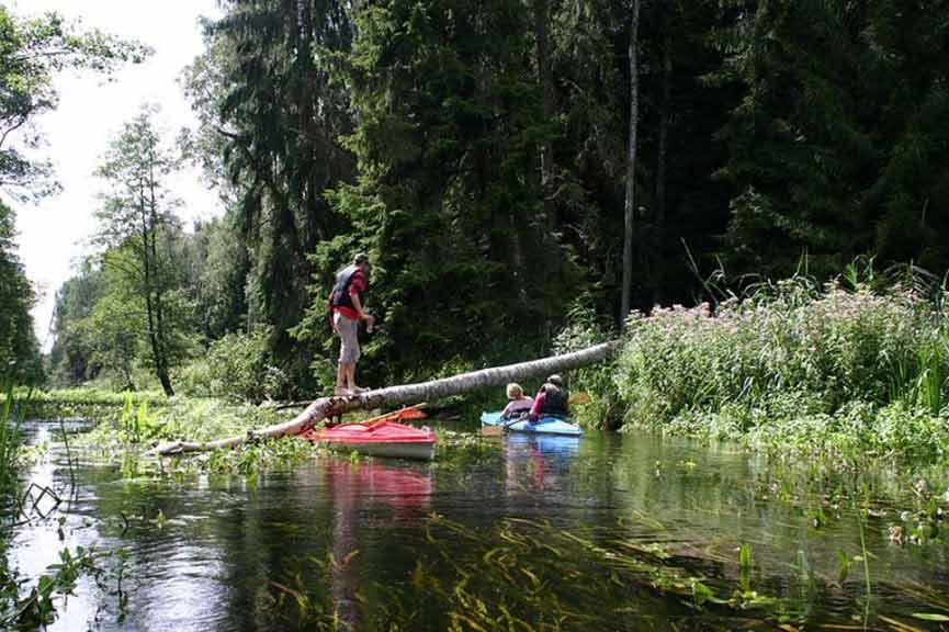 Spływ kajakowy szlakiem Łaźnej Strugi - pokonywanie przeszkody