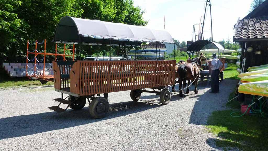 Transport bryczkami na spływ kajakowy