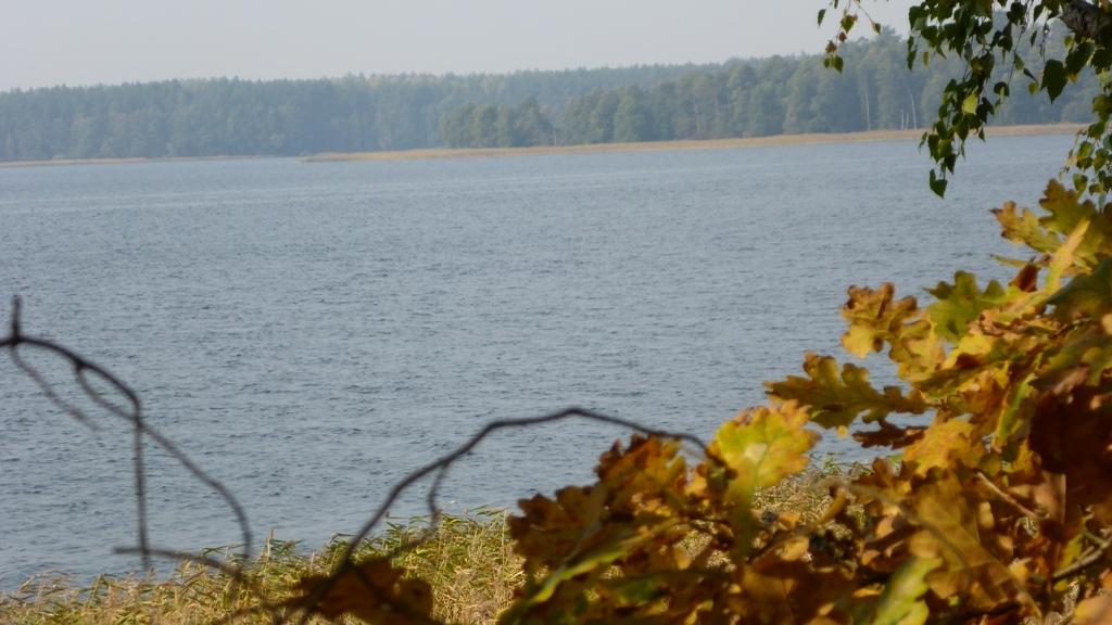 Spływ kajakowy z Cierzpięt do Młyna - widok na Jezioro Mokre