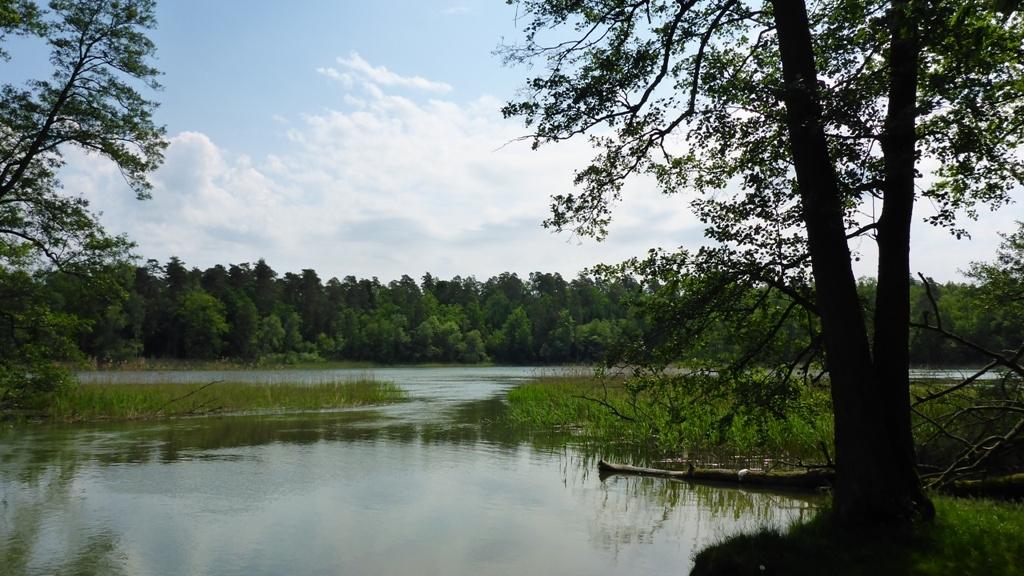 Spływ kajakowy na trasie z Cierzpięt do Młyna - przesmyk prowadzący ze śluzy do rezerwatu Jezioro Krutyńskie