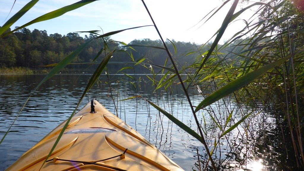 Spływ jednodniowy na trasie z Cierzpięt do Rosochy - rezerwat Jezioro Krutyńskie